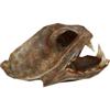 Иконка 'Шлем Орейна Медвежий Коготь'